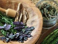 Western Herbal Medicine mod