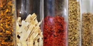 chinese herbal mod