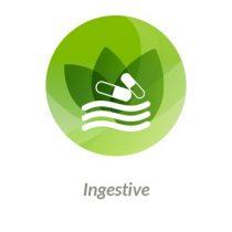 ingestive
